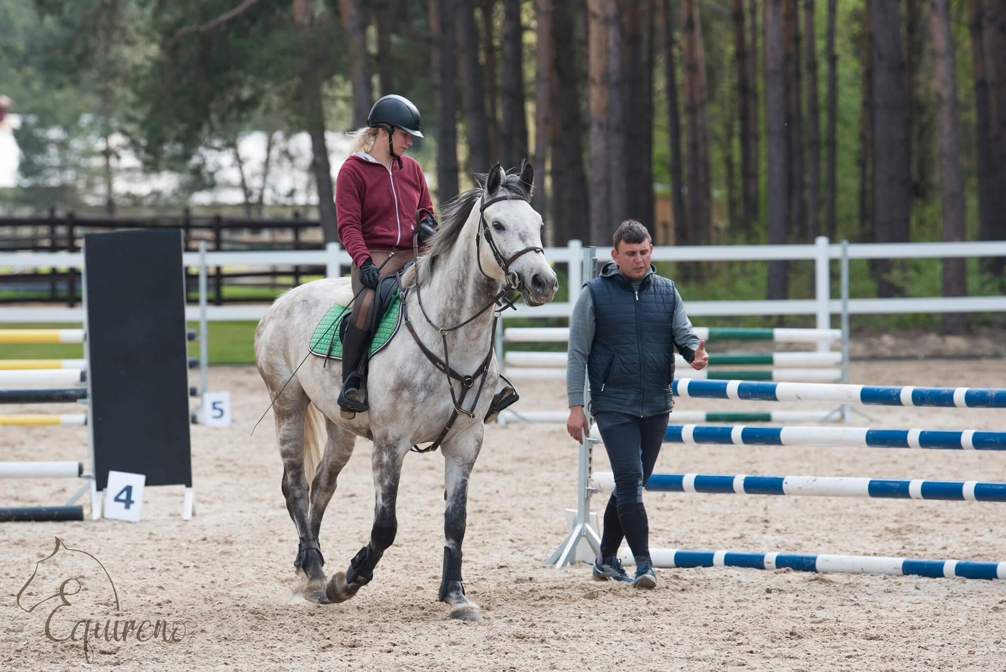 equireno szkółka jeździecka zdjecie